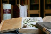 Orario Biblioteche Primo Maggio